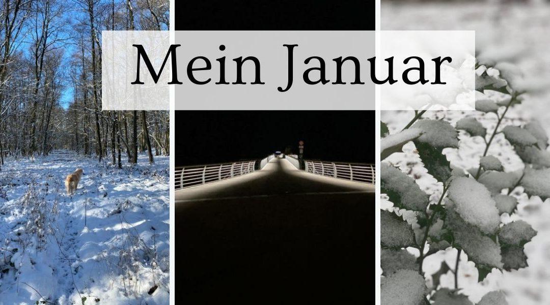 Mein Januar Rückblick – GerneLerner voraus!